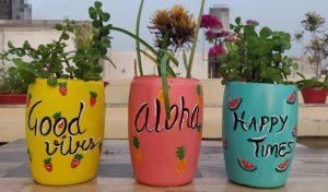 Garden Ideas Pictures