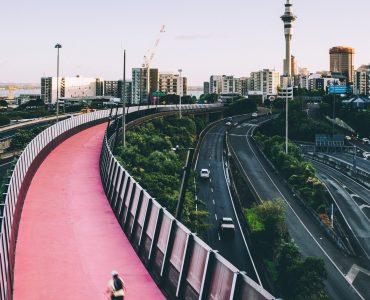 New Zealand Zero Carbon Law