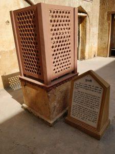 Tulsi Plant - Amer Fort Jaipur
