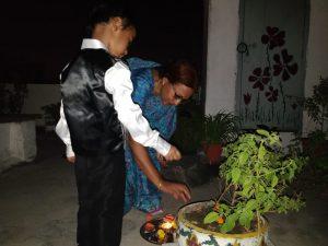 Tulasi Plant Diwali
