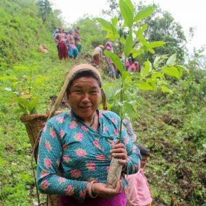 Clan Earth's Tree Planting