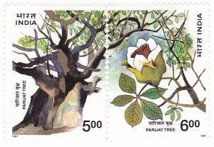 Parijat Tree Stamp