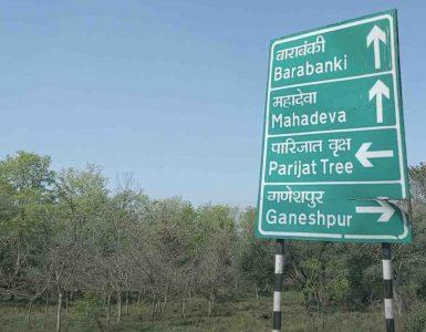 Parijat Tree Board